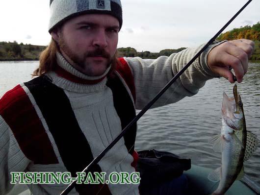 Ловля судака на спиннинг в конце сентября