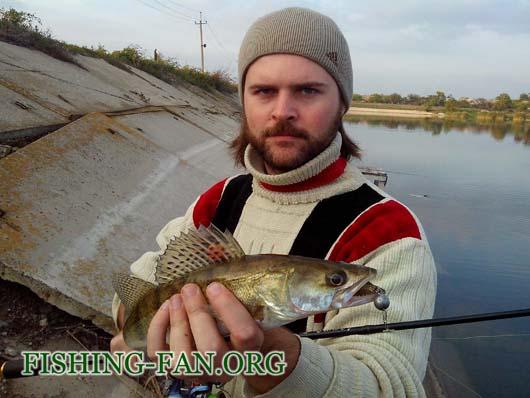 Ловля судака на водоеме Георгиевский