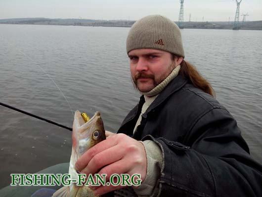 Ловля судака спиннингом с лодок на Старобешево