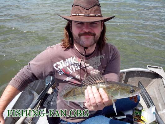 Ловля судака с лодки на спиннинг