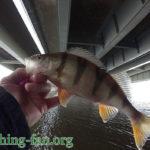 Рыбалка в Финляндии весной